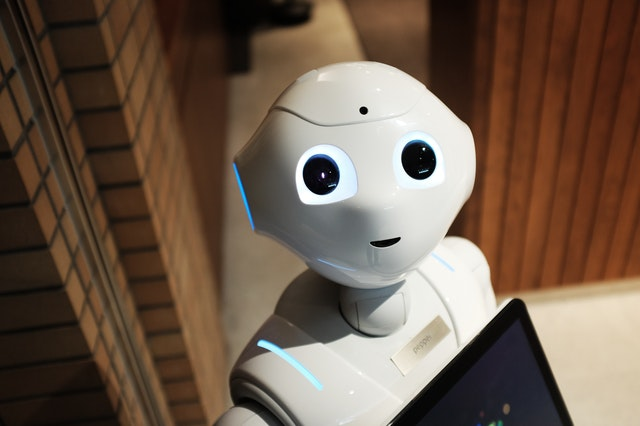 Artificial intelligence bot for eLearning